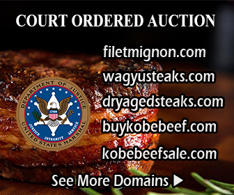 Court Ordered Domain Auction