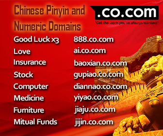 Chinese Pinyin and Numeric Domains