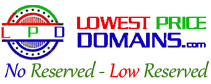 Unique Lowest Price Domains for Sale. No or Low Reserve
