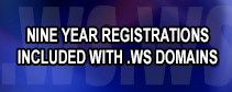 Premium .WS Domains That Don't Until Expire in 2026!