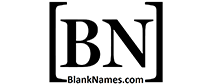 No/Low Reserve Domains by BlankNames.com!