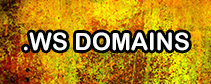 Premium .WS Domains That Don't Until Expire in 2099 and have No Reserves!